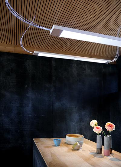 Eclairage par fibre optique Nature et Confort Echy
