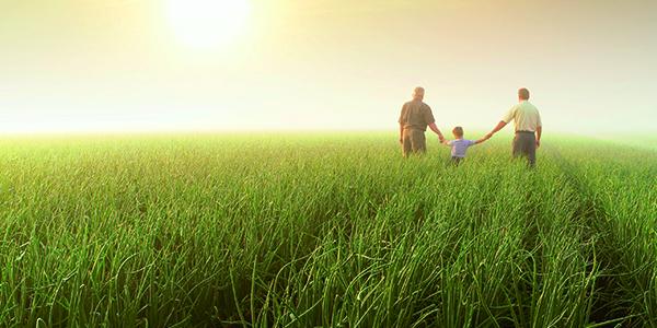 Importance lumière naturelle organisme santé